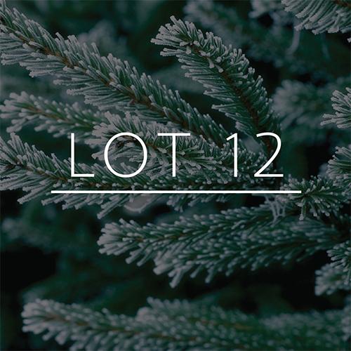 lot12.jpg