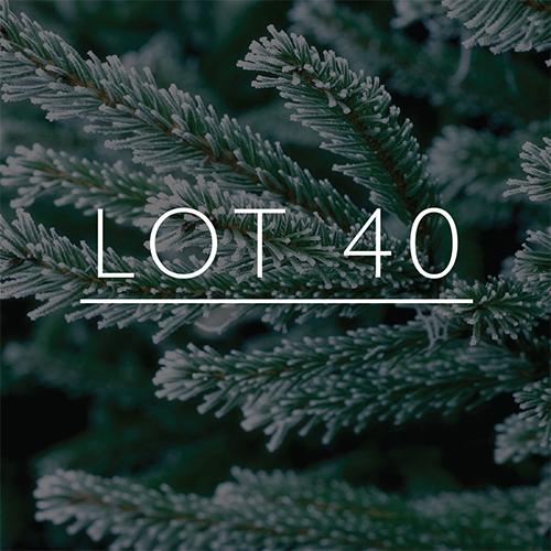 lot40.jpg