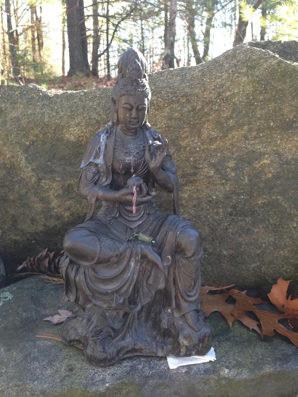 meditation, vipassana, sangha, portland
