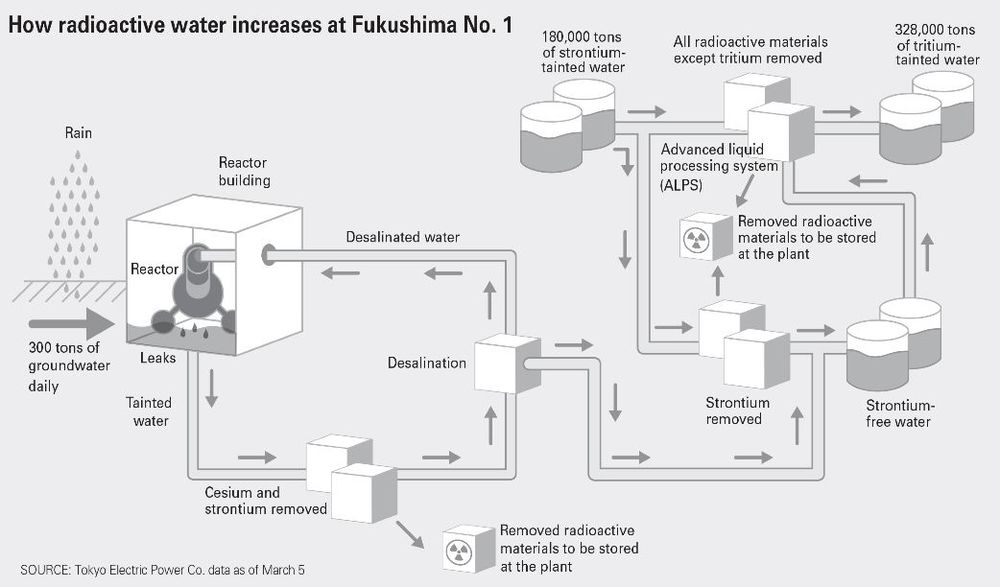 fukusjhima graphic3.jpg