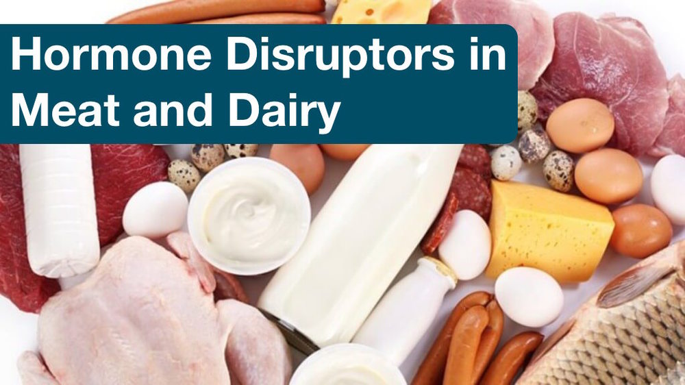 Hormone Disruptors in Meat and Dairy