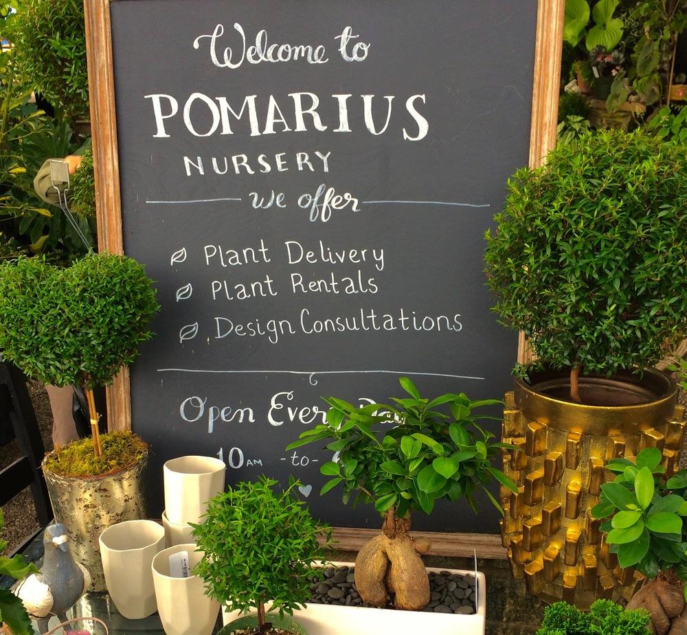 Welcome to Pomarius Nursery