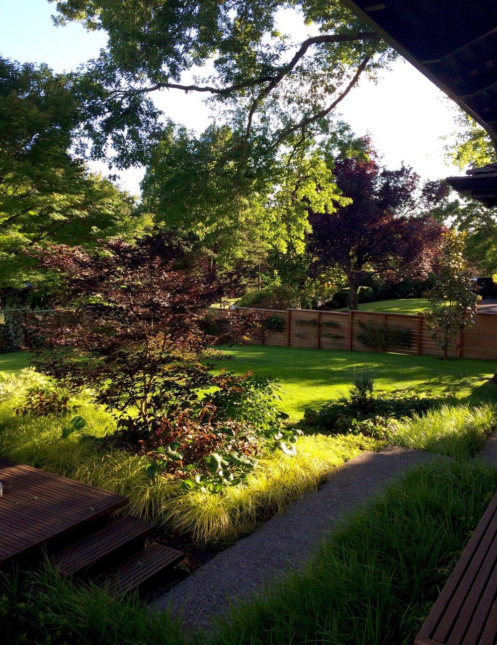 img_2226jpg - Garden Design Services