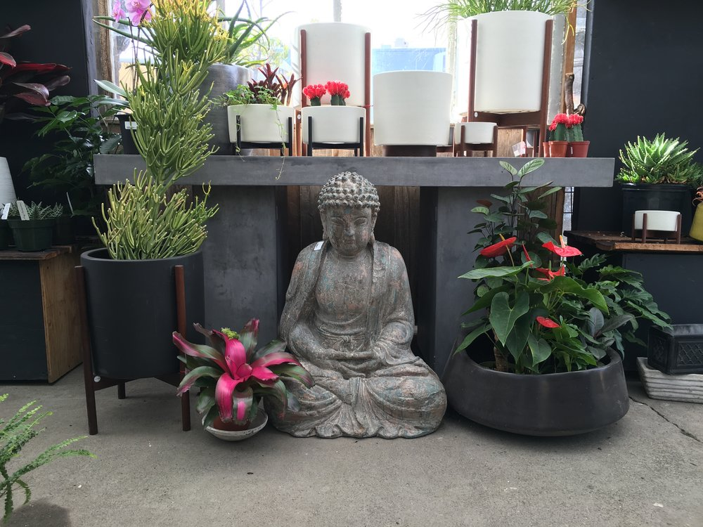 Copy of Buddha Statue and Bromeliad