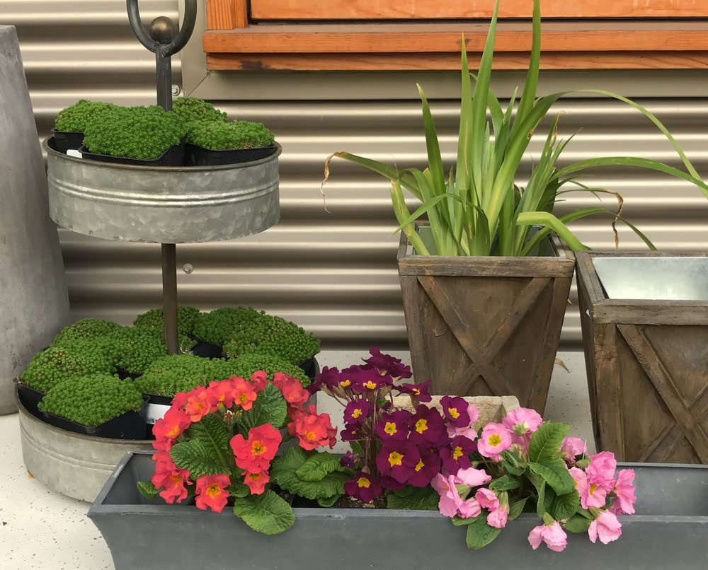Unique Containers for Home and Garden