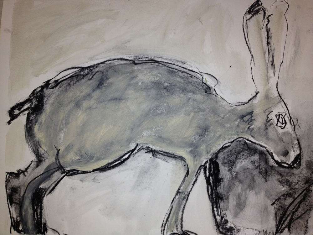 Rustic Hare<br/>18x20 charcoal on paper