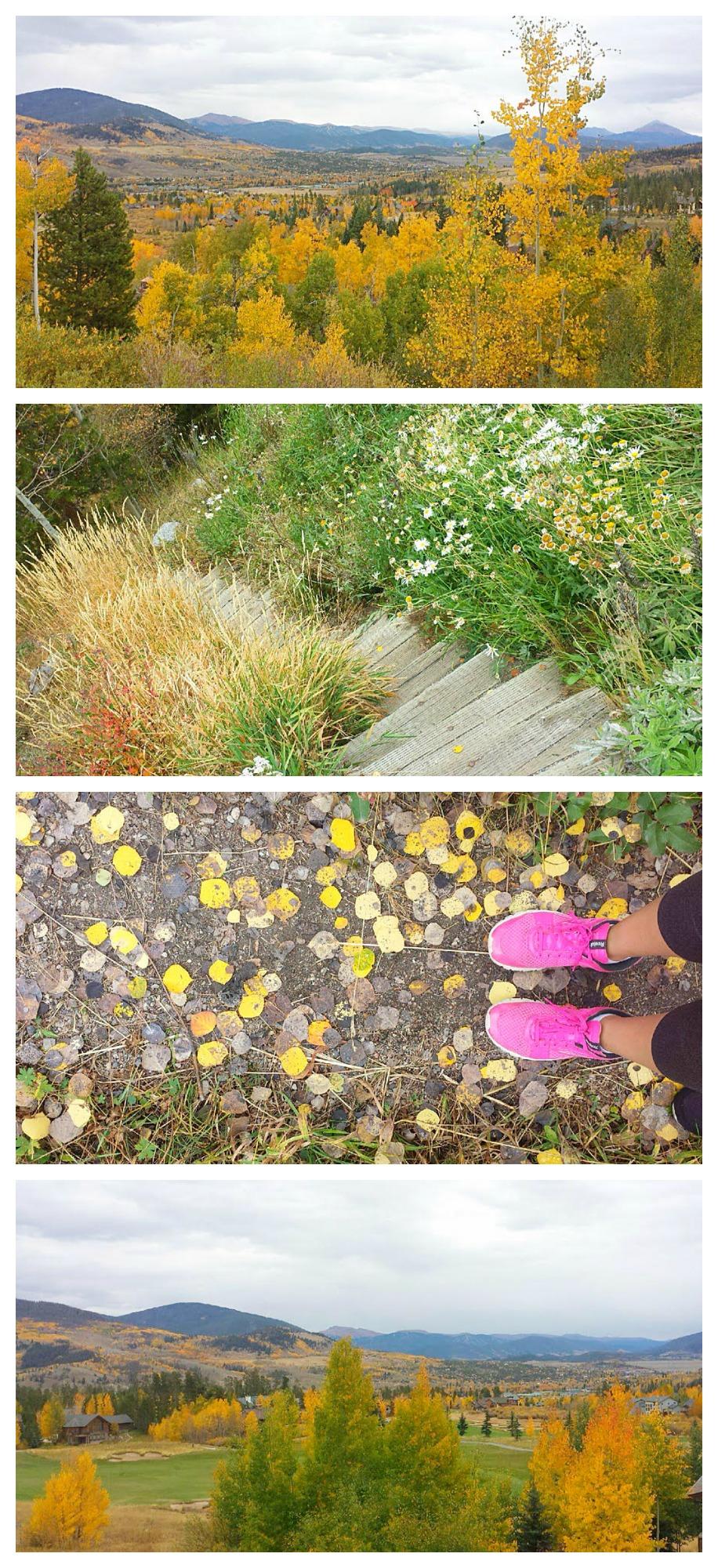 fall folliage in colorado