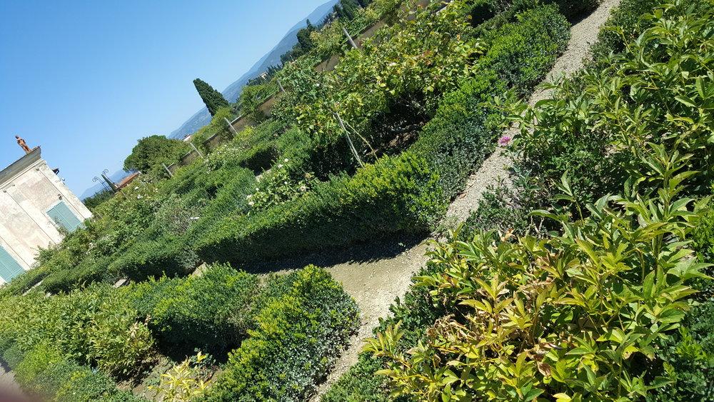 boboli-gardens-florence-italy.jpg