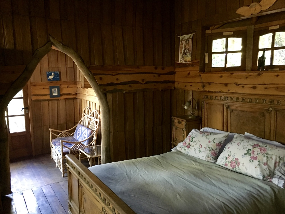 Dossie's Room.jpg