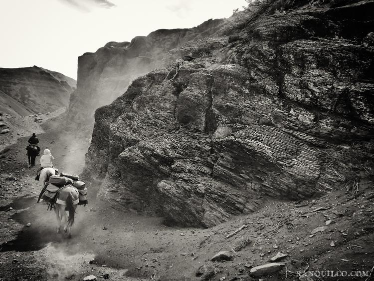 horse trekking patagonia.jpeg