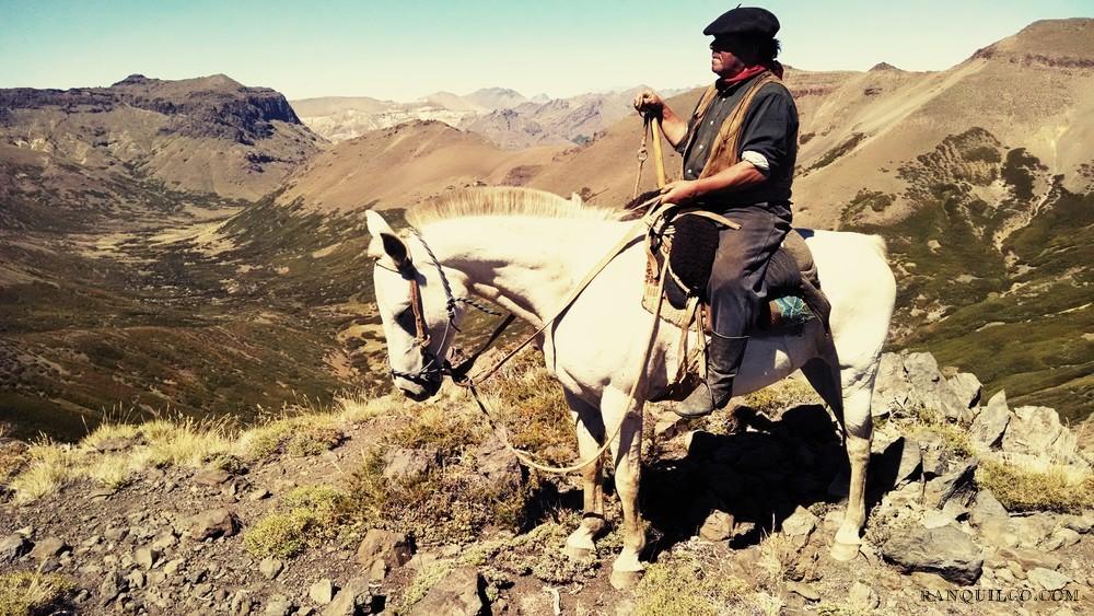 patagonia horse trekking.jpeg
