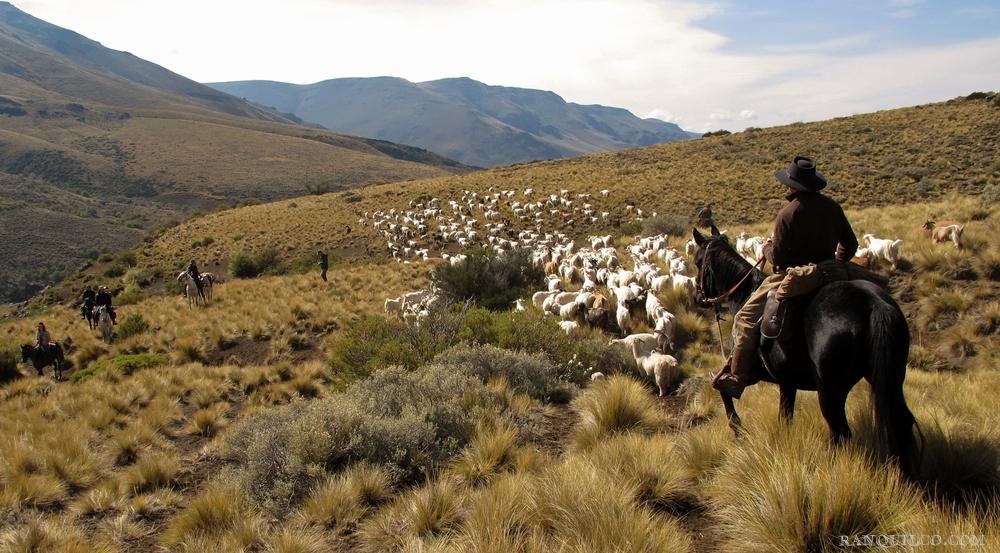 adventure argentina.jpeg