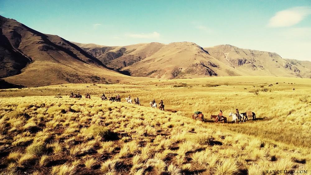 horse trekking argentina.jpeg
