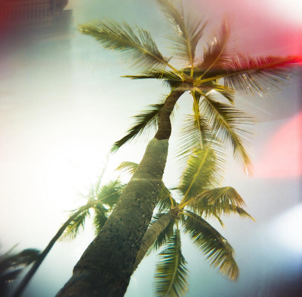 MF_Hawaii-8.jpg