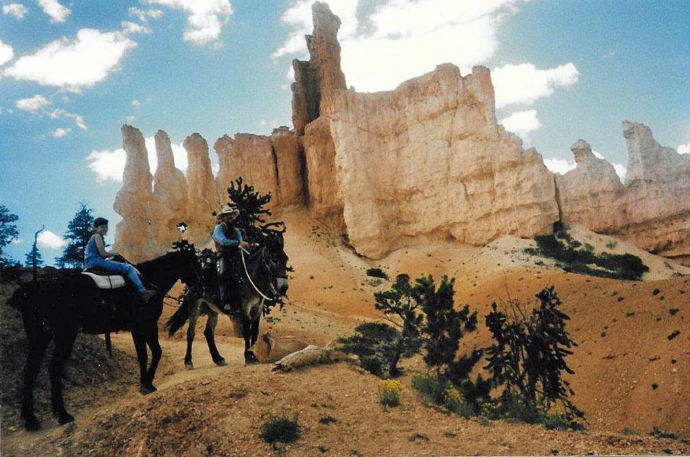 Navigating the winding cliffs by horseback in  Bryce Canyon .