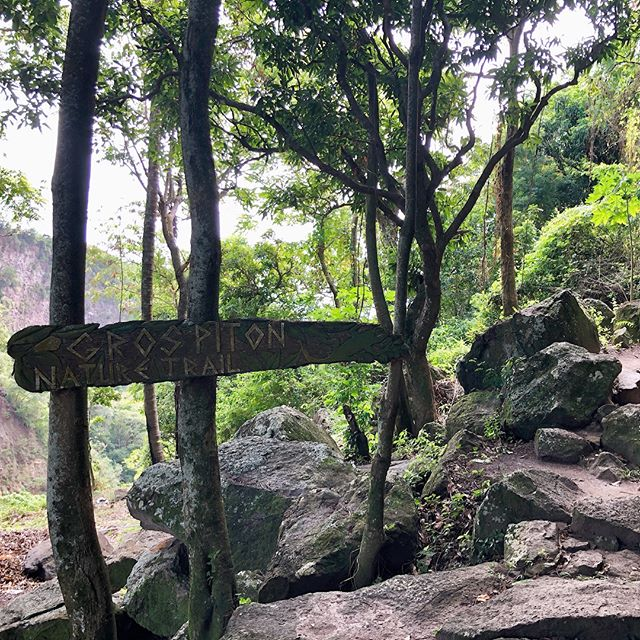 Today we climbed Gros Piton — a 2,000 foot climb over two miles to the peak. Definitely the most strenuous hiking I've ever done, and so worth the view!