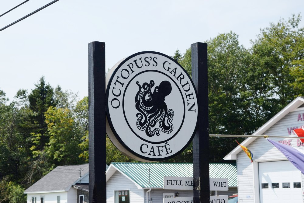 An Octopus's Garden Cafe, in Alma, NB. The staff and food here was SO good!