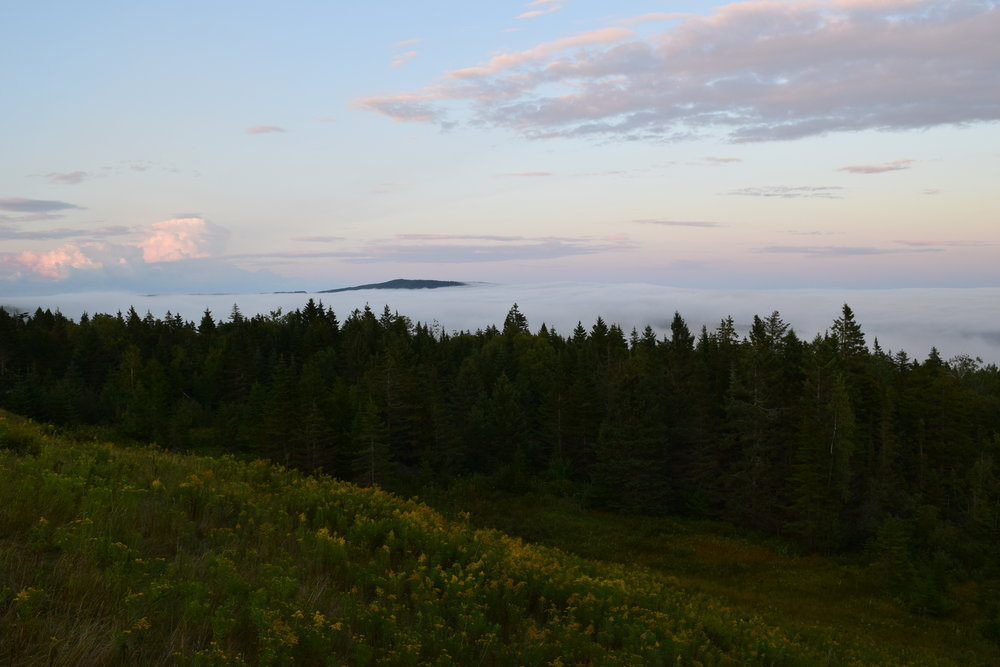 One of the most stunning sunsets driving into Fundy National Park