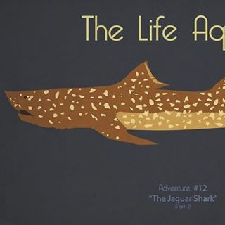 Hey! I need help constructing a 6-10ft. Jaguar shark. #summerofbillchs #thelifeaquatic #wesanderson