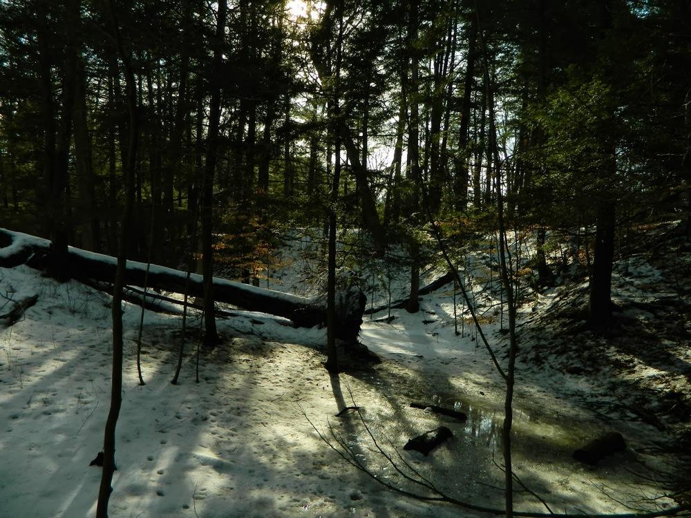 ad880-winterscene