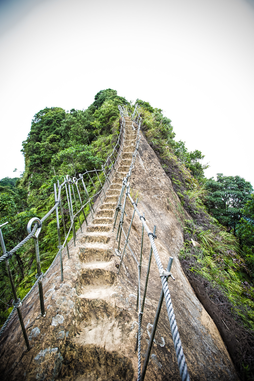 - The path to the top of Putuo Mountain (普陀山)