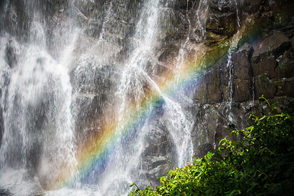 Rainbow on the falls
