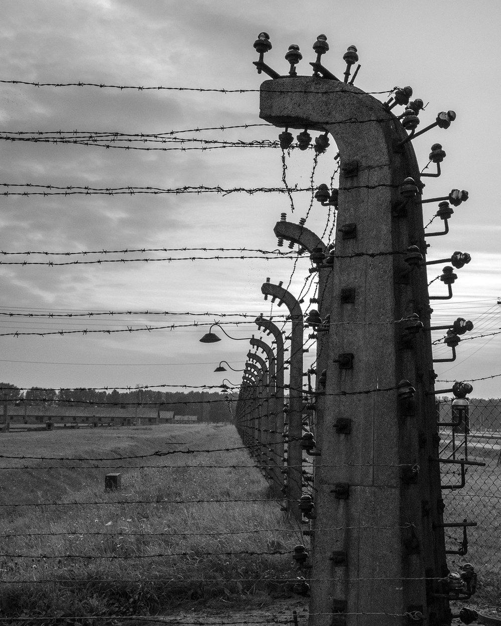 Auschwitz Birkenau-reticolati con isolatori-3236.jpg