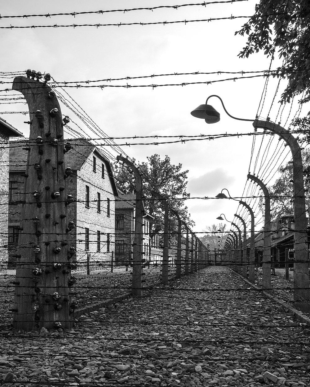 Auschwitz I-tra i reticolati-3147.jpg