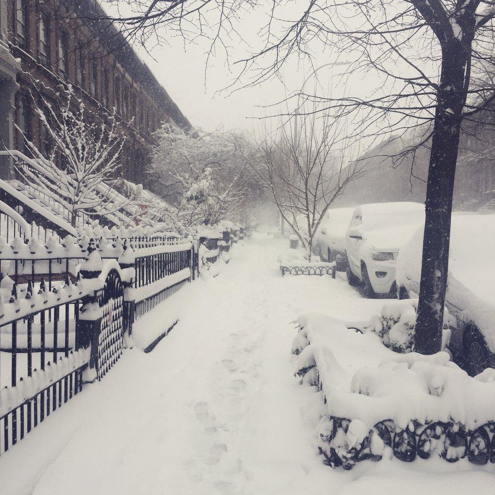 Vingerhoet  nyc snow storm