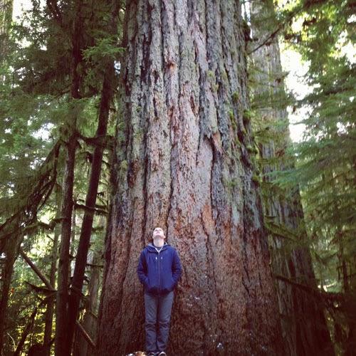 Chris+Tree.jpg