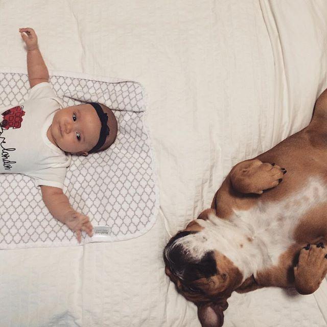 G I R L F R I E N D S • • #englishbulldog #baby #momblogger #babyfaces #babyanddog