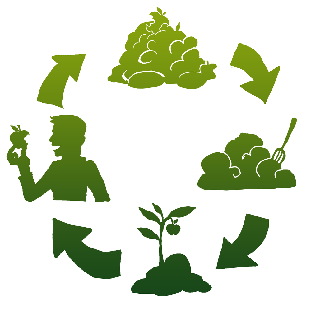 If desired, customers can get high-grade food waste compost that they helped make absolutely free every 6 months.