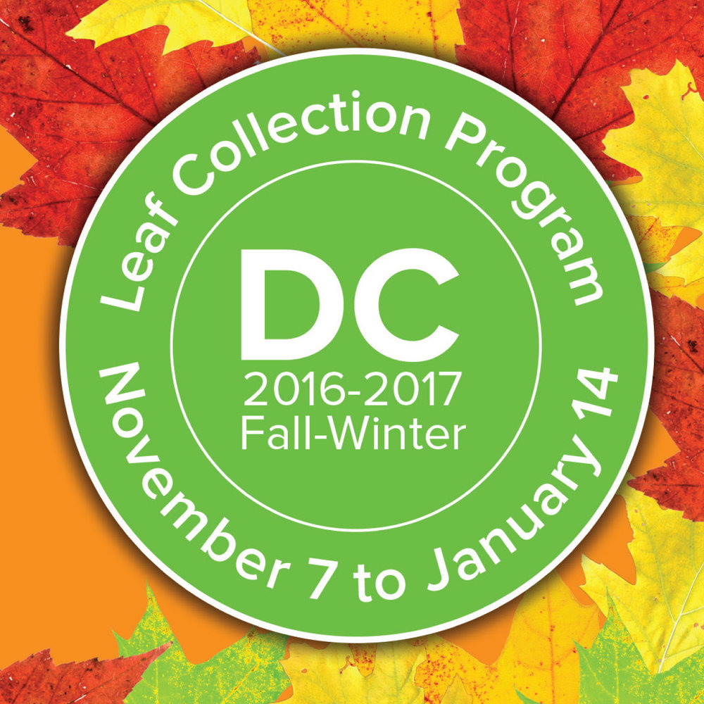 Leaf Collection Brochure 2016-2017- Web