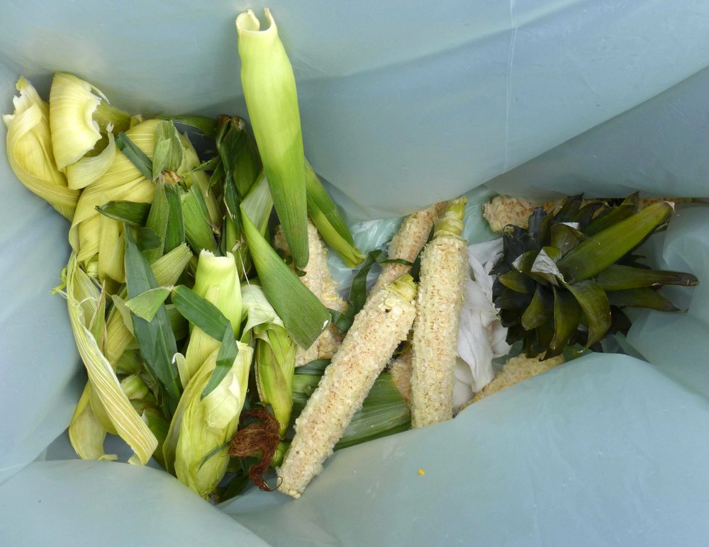 if you buy corn at the market, husk it in a drop-off bin before taking it home. ideally, corn cobs should be broken in two or three pieces to speed composting.