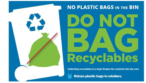 2017.10-Zero-Waste-No-Plastic-Bags.jpg