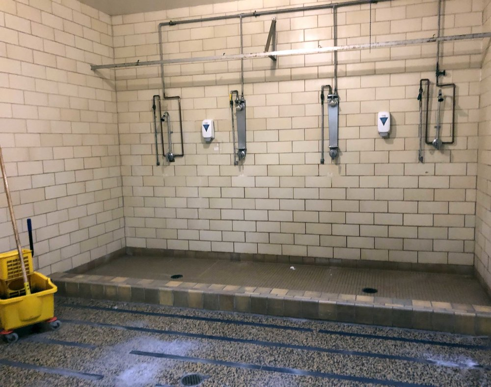 The shower room is just one of the 1950s-era remnants that could use an upgrade.