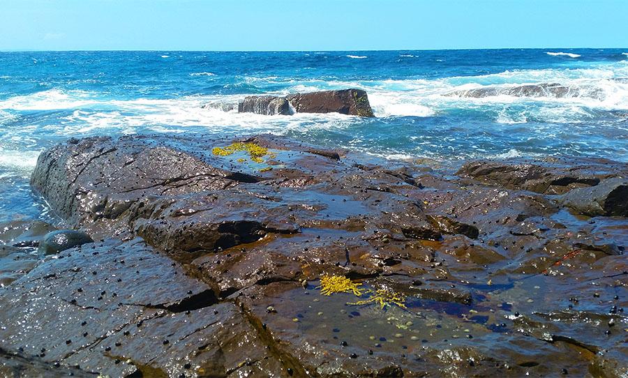 The ordinary, sublime beauty of the sea. Photo © Claudia Jocher 2017