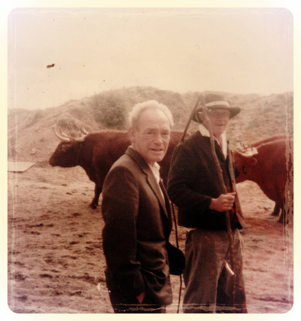 My Dunghutti grandfather Ben Walsh (foreground). Photo by my father, Len Wiltshire  c.1972. Courtesy Sally O'Connell.