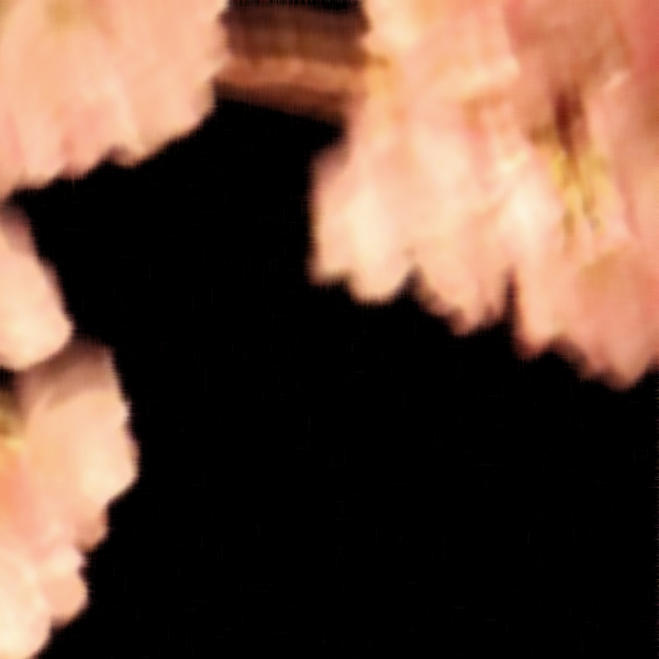 blossoms 009.jpg