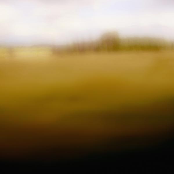 landscape 001.jpg