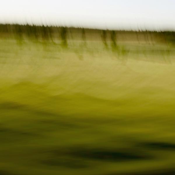 landscape 003.jpg