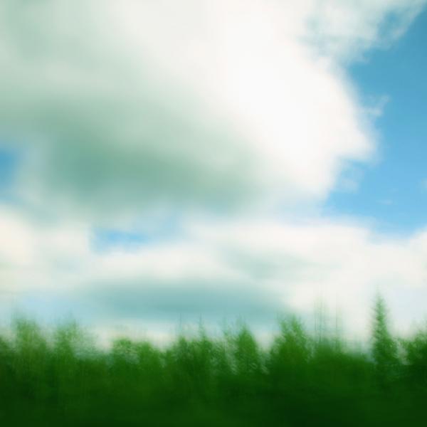 landscape 004.jpg