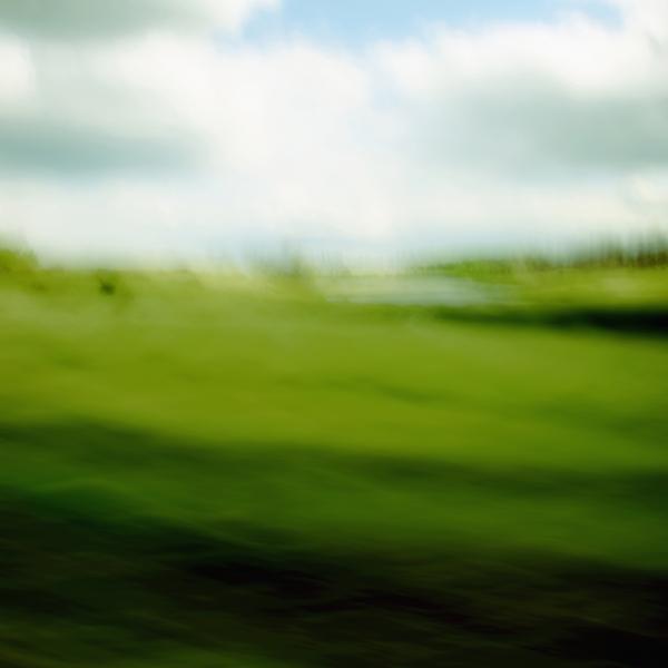 landscape 006.jpg