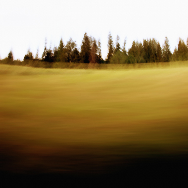 landscape 011.jpg