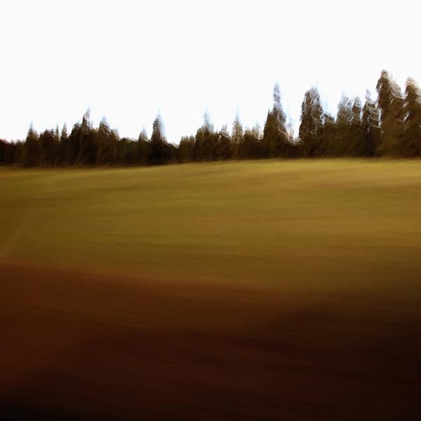 landscape 012.jpg