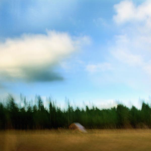 landscape 014.jpg