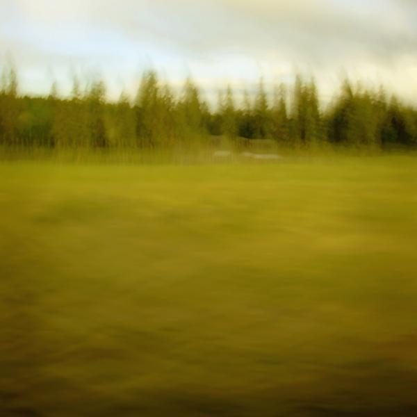 landscape 015.jpg