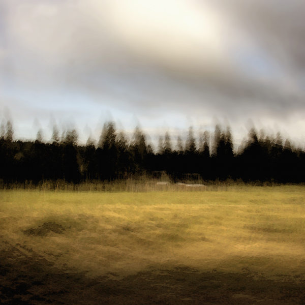 landscape 016.jpg