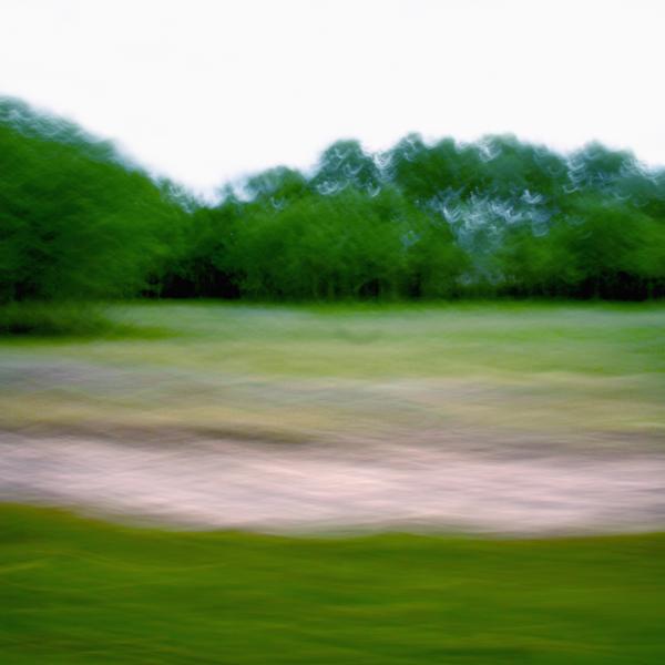 landscape 017.jpg