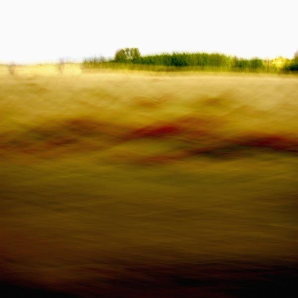 landscape 019.jpg